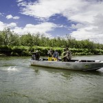 nushagak river fishing salmon on