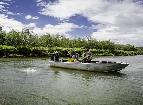 nushagak river fishing salmon on